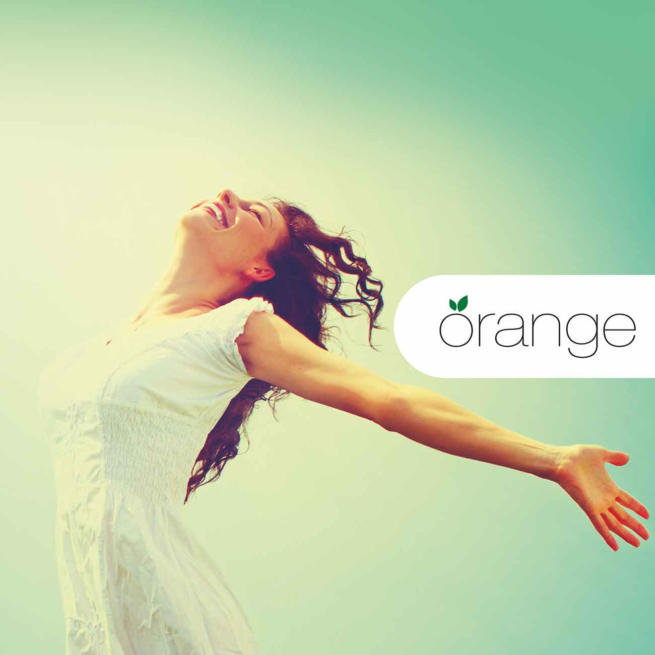 Orange-front-image